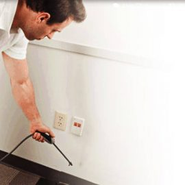 How to Minimize Indoor Pests